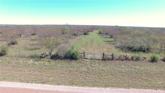 0 Ed Pettus Lane, Goliad, TX 77963 (MLS #344177) :: RE/MAX Elite | The KB Team