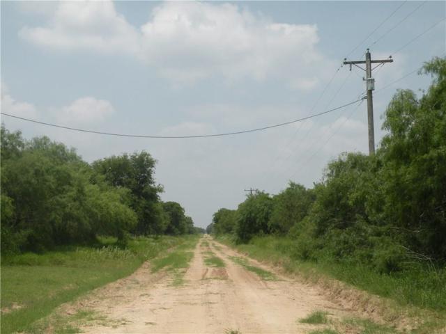 0 Cr 238, Falfurrias, TX 78355 (MLS #344361) :: RE/MAX Elite Corpus Christi