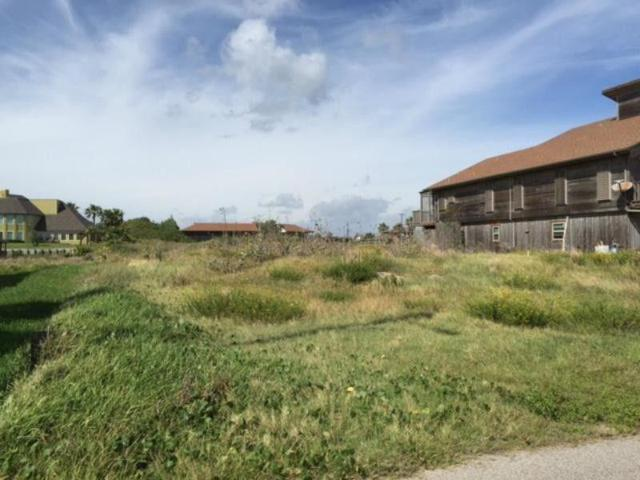 242 Dolphin, Port Aransas, TX 78373 (MLS #344535) :: RE/MAX Elite Corpus Christi