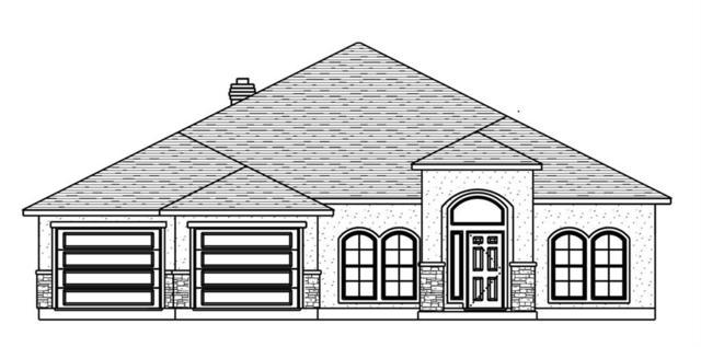 9417 Spanish Oak Dr, Corpus Christi, TX 78410 (MLS #344628) :: Desi Laurel Real Estate Group
