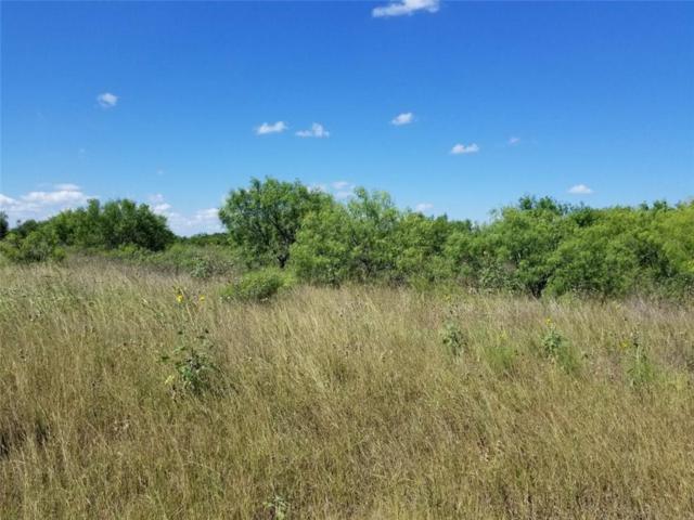 10420 Highway 359, Orange Grove, TX 78372 (MLS #345291) :: RE/MAX Elite Corpus Christi
