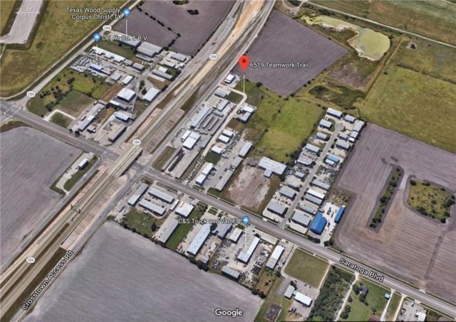 6519 Teamwork Trai, Corpus Christi, TX 78417 (MLS #346714) :: Desi Laurel Real Estate Group