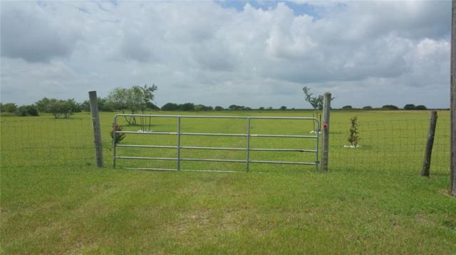 Bishop, TX 78343 :: Desi Laurel Real Estate Group