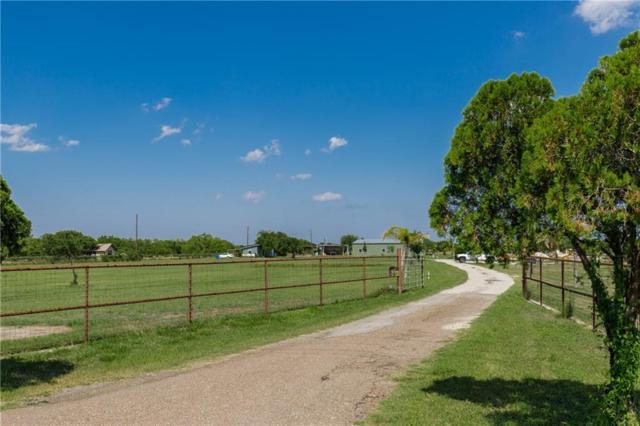1784 N Fm 738, Orange Grove, TX 78372 (MLS #347259) :: Desi Laurel Real Estate Group