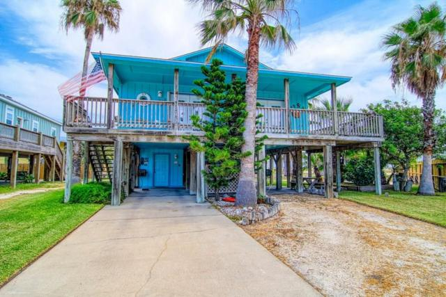 614 Dolphin Circ, Port Aransas, TX 78373 (MLS #347437) :: Desi Laurel Real Estate Group