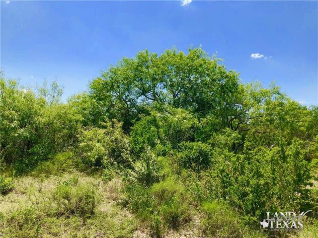 0 Hwy 59- Tract 2- 26.51 Acres, Freer, TX 78357 (MLS #347487) :: Desi Laurel Real Estate Group