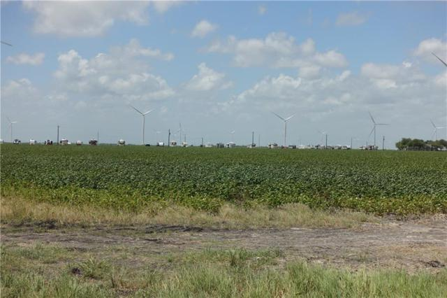 0000 Hwy 181 & County Rd 3677 (West Of Cr 3677), Gregory, TX 78359 (MLS #348009) :: South Coast Real Estate, LLC