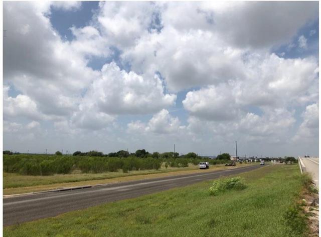 8801 State Hwy 44, Corpus Christi, TX 78406 (MLS #348298) :: Desi Laurel Real Estate Group