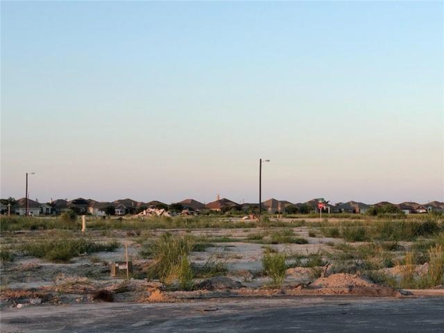 337 Paradise, Port Aransas, TX 78373 (MLS #348400) :: Desi Laurel Real Estate Group
