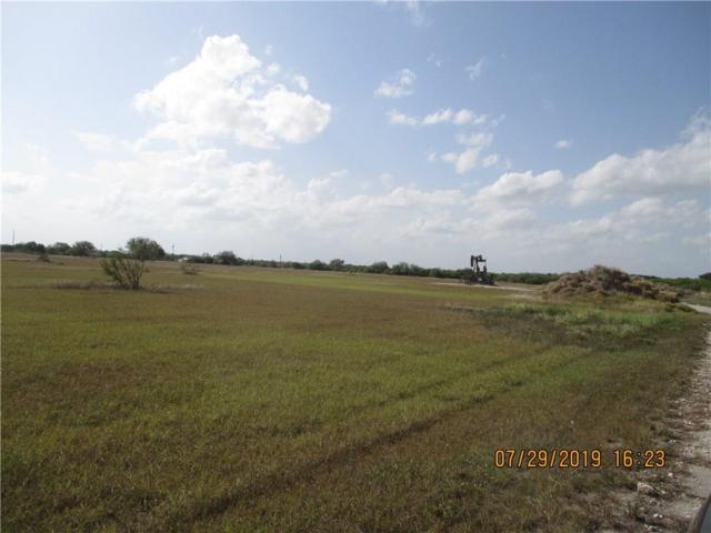 44 State Hwy, Robstown, TX 78380 (MLS #348401) :: Desi Laurel Real Estate Group