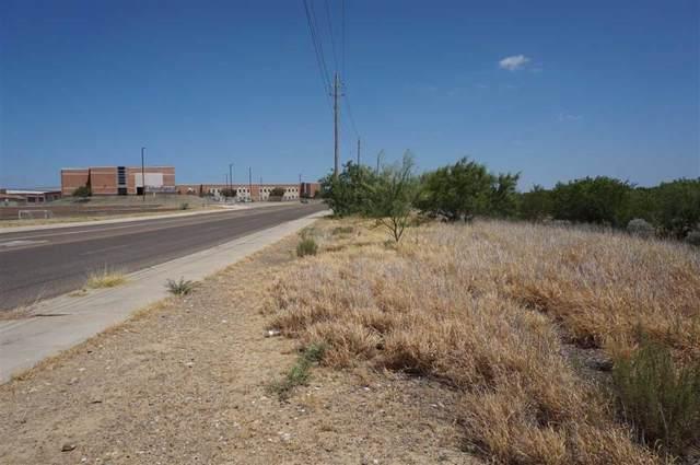 06 St Luke Blvd, Laredo, TX 78046 (MLS #350188) :: Desi Laurel Real Estate Group
