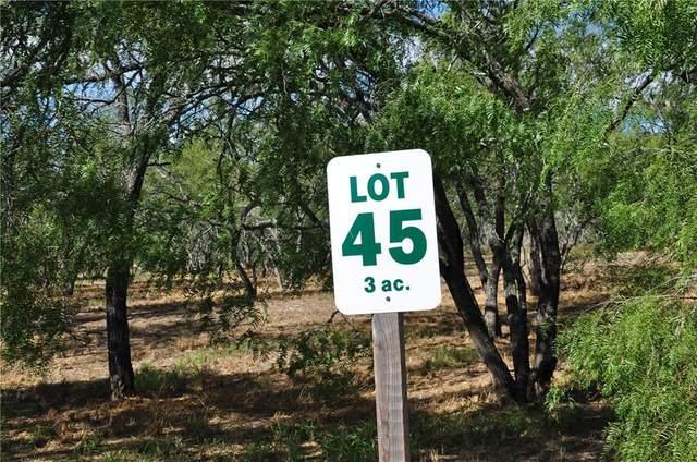 5723 Sunny Vale Road, Mathis, TX 78368 (MLS #351077) :: KM Premier Real Estate