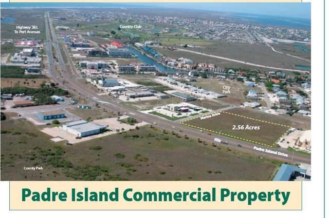 14101 S Padre Island Dr, Corpus Christi, TX 78418 (MLS #352426) :: Desi Laurel Real Estate Group
