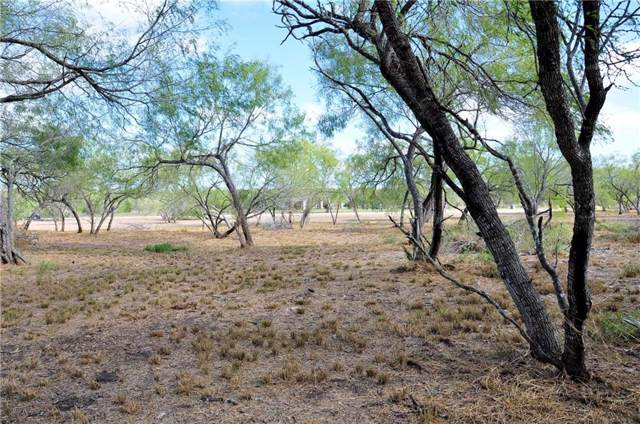 21041 Galway Drive, Mathis, TX 78368 (MLS #352802) :: South Coast Real Estate, LLC