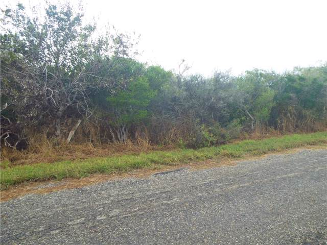 6025 Cr 523, Skidmore, TX 78389 (MLS #352812) :: RE/MAX Elite Corpus Christi