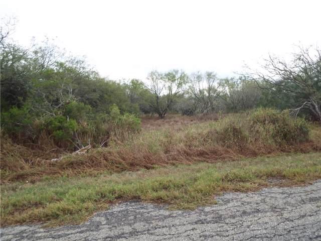 6131 Cr 523, Skidmore, TX 78389 (MLS #352881) :: South Coast Real Estate, LLC
