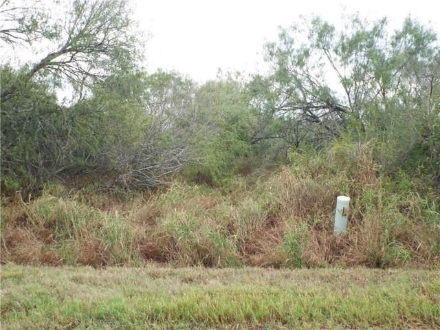 6163 Cr 523, Skidmore, TX 78389 (MLS #352883) :: South Coast Real Estate, LLC