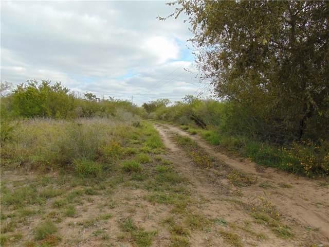 00 Hwy 1359, George West, TX 78022 (MLS #353005) :: Desi Laurel Real Estate Group