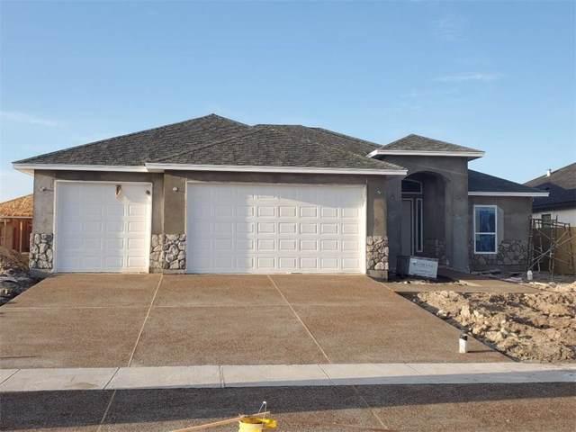7909 Iron Man, Corpus Christi, TX 78414 (MLS #353573) :: Desi Laurel Real Estate Group