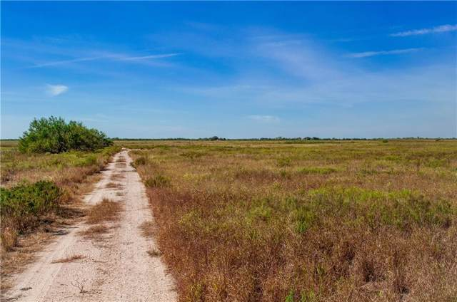 00 Cr 425 Cr, Premont, TX 78375 (MLS #353850) :: RE/MAX Elite Corpus Christi