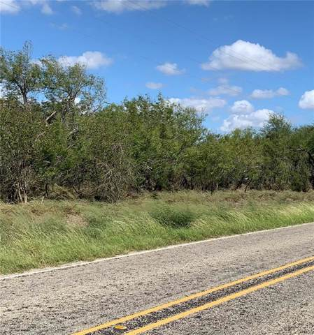 Sandia, TX 78383 :: South Coast Real Estate, LLC