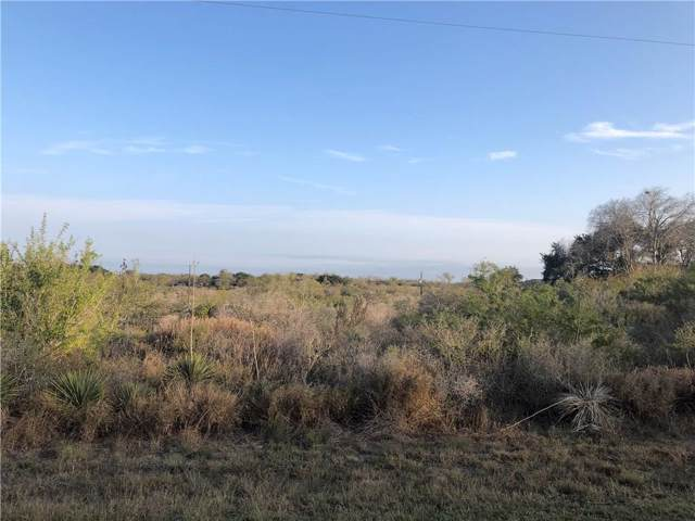 122 Crazy Horse Dr, Sandia, TX 78383 (MLS #354024) :: Desi Laurel Real Estate Group