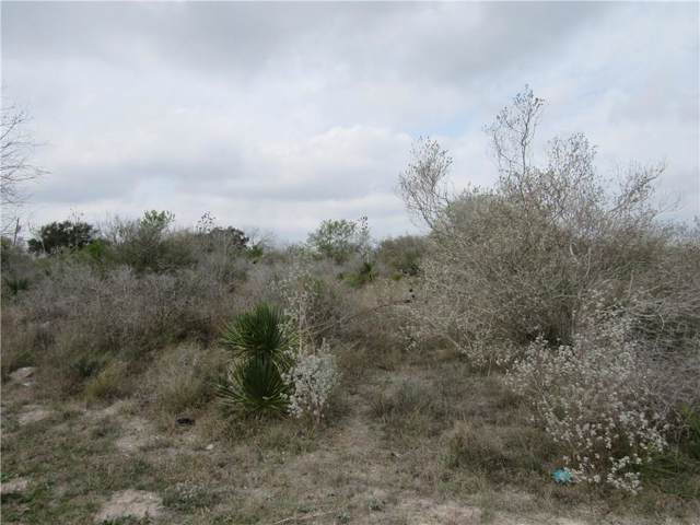 113 Tomahawk Dr, Sandia, TX 78383 (MLS #354858) :: Desi Laurel Real Estate Group