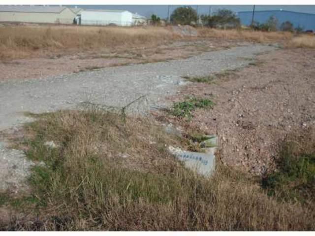 302 Clarkwood N, Corpus Christi, TX 78406 (MLS #354982) :: Desi Laurel Real Estate Group