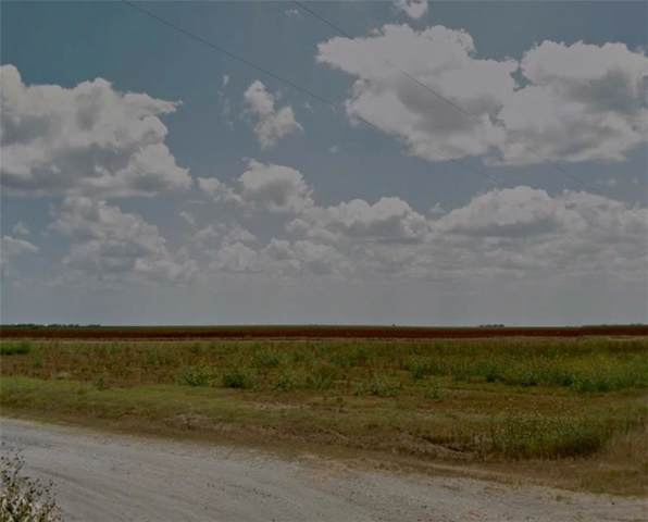 4795 County Road 14, Bishop, TX 78343 (MLS #355035) :: RE/MAX Elite Corpus Christi