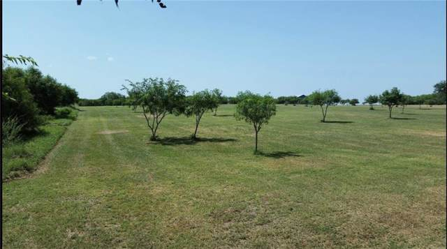 000 Fm 70, Sandia, TX 78383 (MLS #355074) :: Desi Laurel Real Estate Group