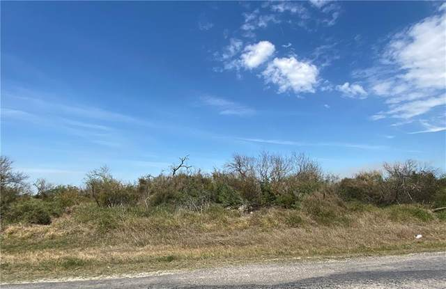372 Rattlesnake Point, Rockport, TX 78382 (MLS #358411) :: KM Premier Real Estate