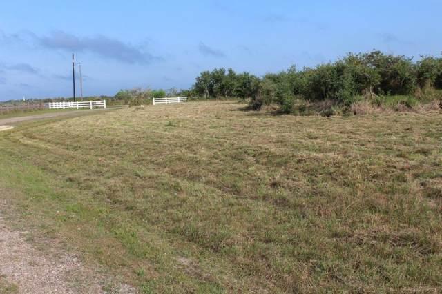 111 Bay Watch Drive, Rockport, TX 78382 (MLS #358656) :: RE/MAX Elite Corpus Christi