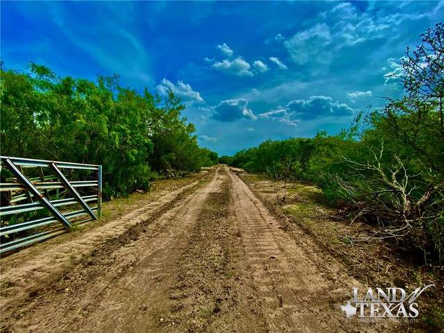 0 County Road 464, Alice, TX 78332 (MLS #361591) :: Desi Laurel Real Estate Group