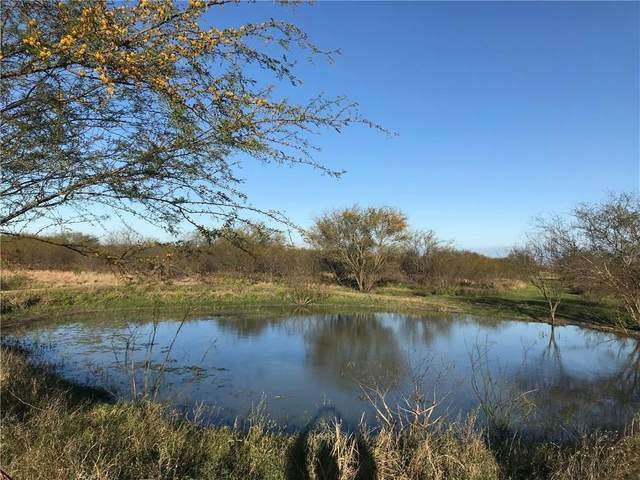 199 Cr 129 (Unrestricted 42 Acres), Alice, TX 78332 (MLS #363739) :: Desi Laurel Real Estate Group