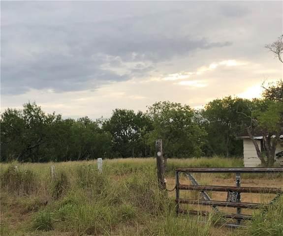 5967 County Road 99, Sandia, TX 78383 (MLS #363951) :: Desi Laurel Real Estate Group