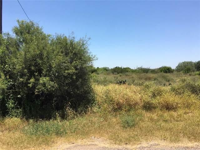 44 Robbie Drive, Hebbronville, TX 78361 (MLS #366560) :: KM Premier Real Estate