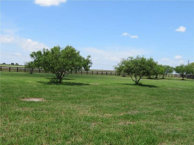 20L Ranch, Odem, TX 78370 (MLS #369749) :: Desi Laurel Real Estate Group