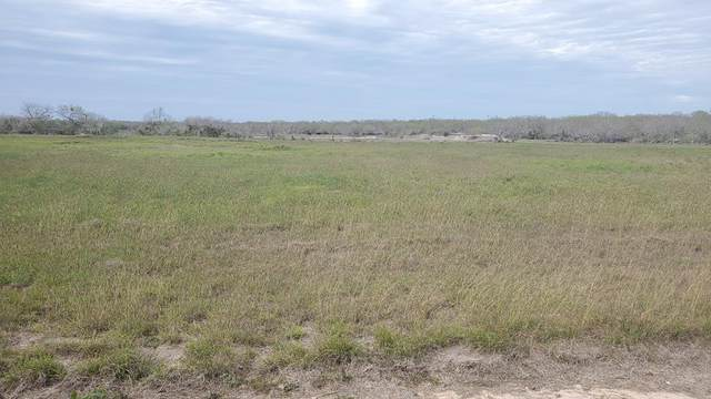 00 T-Head Lot 6 Drive, Riviera, TX 78379 (MLS #370470) :: KM Premier Real Estate