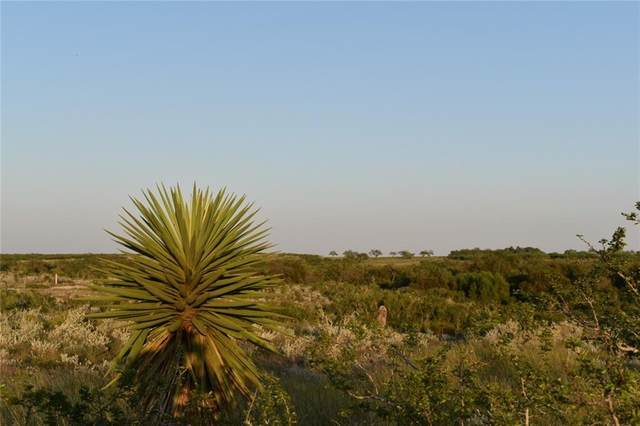 00 Hidden Creek Drive, Orange Grove, TX 78372 (MLS #371772) :: South Coast Real Estate, LLC