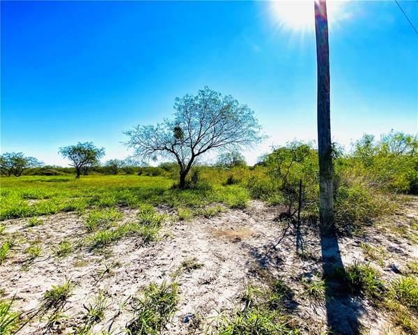 Alice, TX 78332 :: KM Premier Real Estate