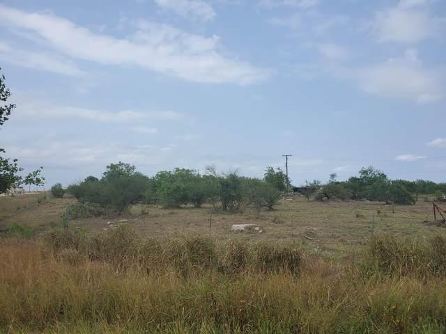 840 Egery Island, Taft, TX 78390 (MLS #373842) :: RE/MAX Elite Corpus Christi