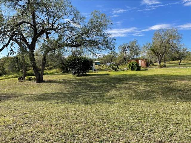 315 Vista Drive, Sandia, TX 78383 (MLS #375560) :: RE/MAX Elite | The KB Team