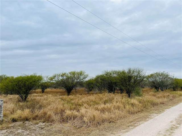 Lot 25 N Hollow Tree, Alice, TX 78332 (MLS #375719) :: RE/MAX Elite | The KB Team