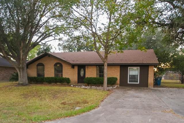1218 Gaymeadow, Goliad, TX 77963 (MLS #376250) :: KM Premier Real Estate