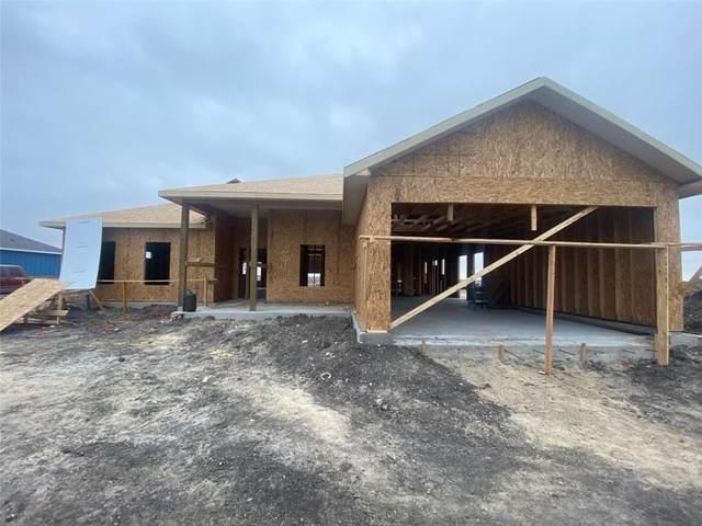 126 Longhorn Drive, Odem, TX 78370 (MLS #377033) :: KM Premier Real Estate