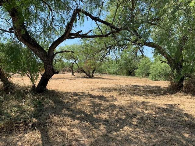 0 Guadalupe- .34 Acre Lot Street, Alice, TX 78332 (MLS #378196) :: South Coast Real Estate, LLC
