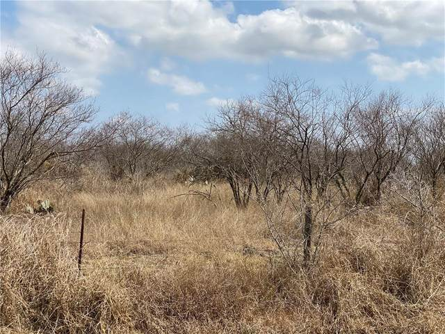 Tract 3 County Road 2431, Sinton, TX 78387 (MLS #378218) :: RE/MAX Elite | The KB Team