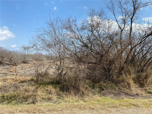 Tract 6 County Road 2431, Sinton, TX 78387 (MLS #378225) :: RE/MAX Elite | The KB Team