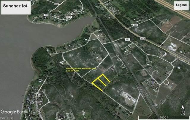 00 Oak Lane, Mathis, TX 78368 (MLS #380739) :: KM Premier Real Estate