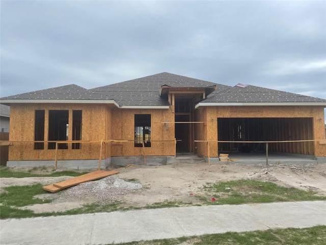 346 Oakdale Drive, Corpus Christi, TX 78418 (MLS #380856) :: RE/MAX Elite Corpus Christi